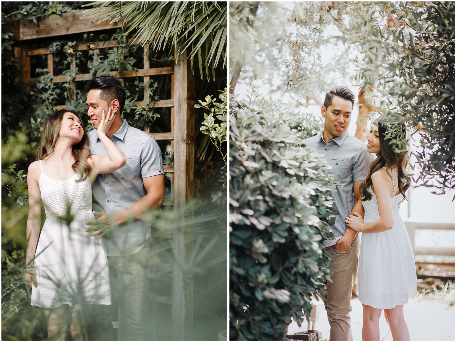 Engagement session in the Mediterranean Gardens at RBG