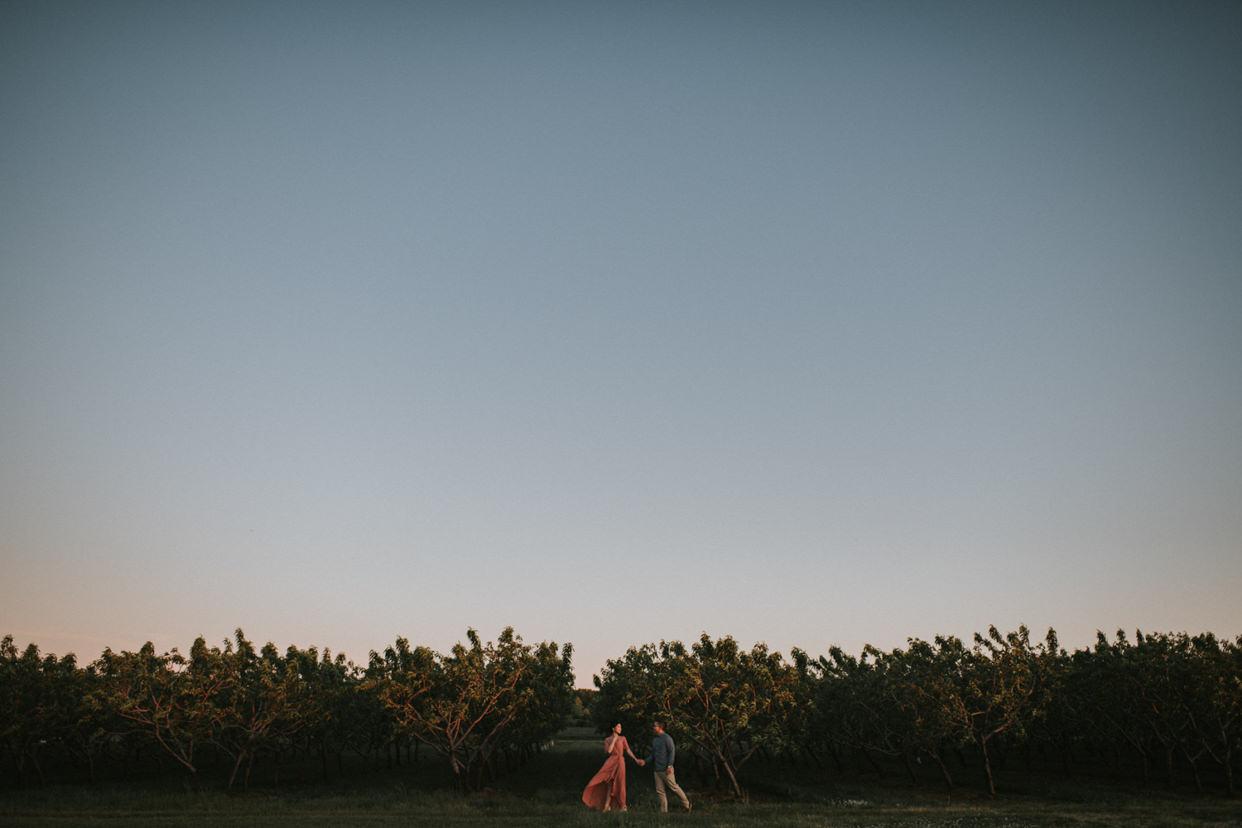 Niagara On The Lake Vineyard Engagement Photo