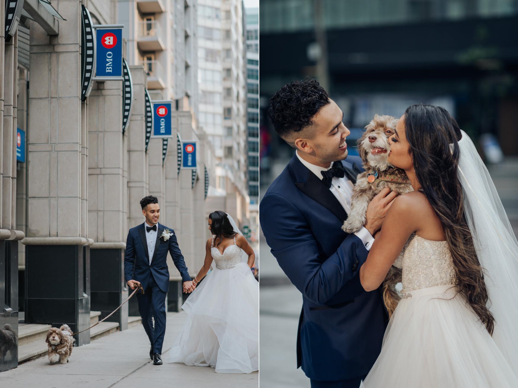 Toronto Wedding Couple Dog Photo