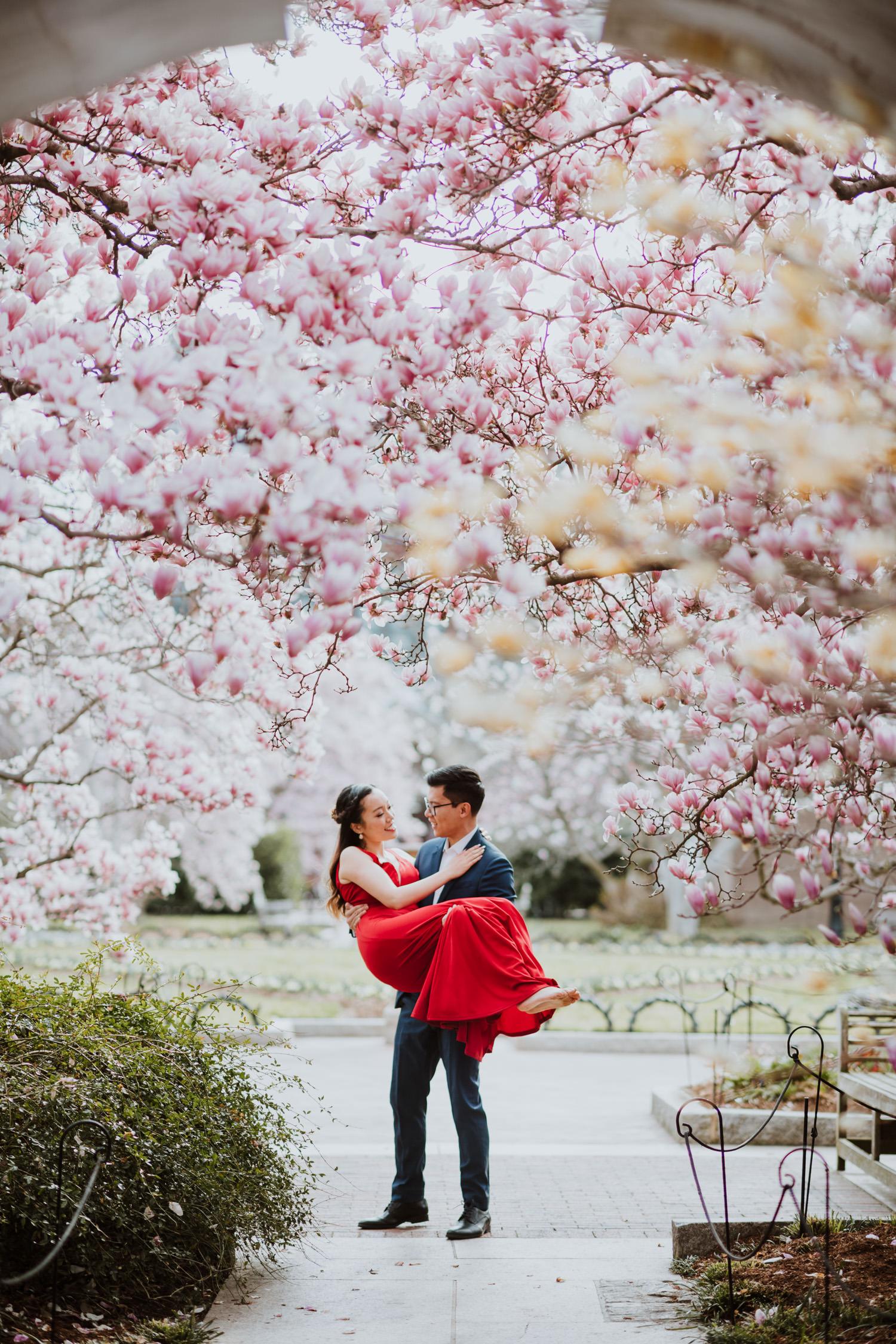 Enid A. Haupt Garden Magnolia Engagement Photo