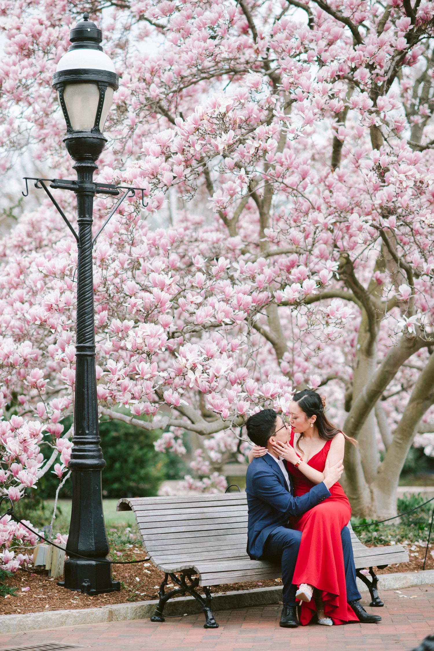 Magnolia Garden Engagement Session