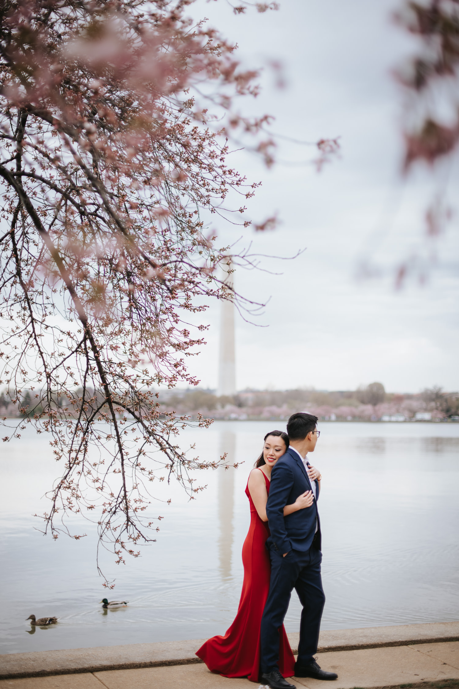 Tidal Basin Cherry Blossom Engagement Photo